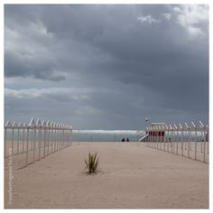 Mar del Plata en marzo. Dream Life, Country, Beach, Water, Angels, Photography, Outdoor, World, Mar Del Plata