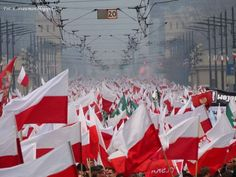 11 listopad 11 November Marsz Niepodległości National Independence Day (Poland)
