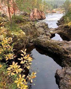 """Näin räiskyvä ruska valtasi maan, katso 13 värikästä kuvaa: """"Suomi on komea maa"""" Lappland, Post Today, Tokyo, Nostalgia, National Parks, September, Environment, Hiking, Angel"""