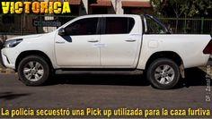Victorica: Robo de dinero a peón rural, caza furtiva y daños a vehículo Hunting, Money, News