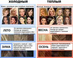 ЦВЕТОТИП - Часть 3 - Практическая.... - блог на Спонжик.ру
