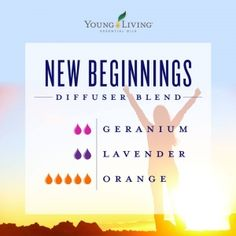 Want pure orange essential oil? Young Living orange essential oil is cold-pressed, therapeutic-grade, and has a variety of uses! Essential Oils For Headaches, Yl Essential Oils, Essential Oil Diffuser Blends, Young Living Essential Oils, Geranium Essential Oil, Essential Oil Mixtures, Yl Oils, Orange Essential Oil, Young Living Diffuser