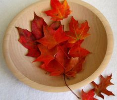 Just in time. Preserve Autumn Leaves by Martha Stewart: Glycerin and water keeps them colorful and supple.