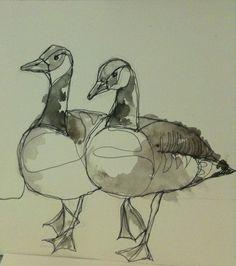 Canada Geese Watercolor & sketch