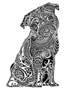 429 Best Coloring Book Animals Nature Wildlife Images
