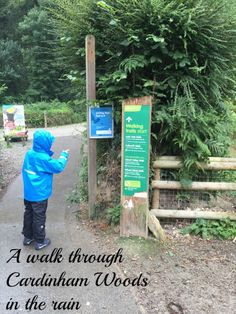A walk through Cardinham Woods in the rain #weloveforests - found not far from Bodmin Moor in North Cornwall, walking and cycle trails