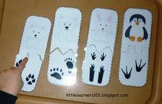 Bookmarklet Details - Little Learners: Polar Animals Match-up - Memetales Preschool Themes, Preschool Science, Preschool Education, Animal Footprints, Artic Animals, Penguins And Polar Bears, Polo Norte, Animal Tracks, Animal Activities