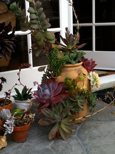 Strawberry pot planted with succulents.