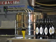 Rylstone Olive Press Olive Press, French Press, Espresso Machine, Coffee Maker, Kitchen Appliances, Espresso Coffee Machine, Coffee Maker Machine, Diy Kitchen Appliances, Coffee Percolator