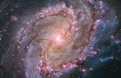 Spiral Galaxy M83 - 2014 Hubble Space Telescope Advent Calendar - In Focus - The Atlantic