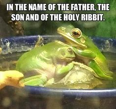Okay, I know that this is NOT how we baptize (In Titles) but this is hilarious!