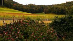 Fall at Justin Trails Resort near Sparta Wisconsin - www.justintrails.com and www.facebook.com/justintrails