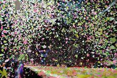 Chris in loads of confetti!
