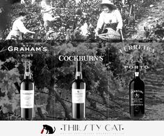 GRAHAM'S + COCKBURN'S  + FERREIRA We selected the best vintage just for you on this exclusive offer! :) Save up to 13€  on this Super Vintage Port 2011 Pack (includes 3 bottles) Buy now! - hGRAHAM'S + COCKBURN'S  + FERREIRA We selected the best vintage just for you on this exclusive offer! :) Save up to 13€  on this Super Vintage Port 2011 Pack (includes 3 bottles) Buy now! - http://www.thirsty-cat.com/product/3x-2011-vintage-port-promo-pack