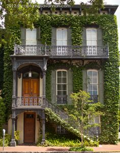 Old home in downtown Savannah with long windows  ivy