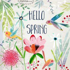 mason_1516085_Hello Spring