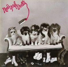 New York Cats