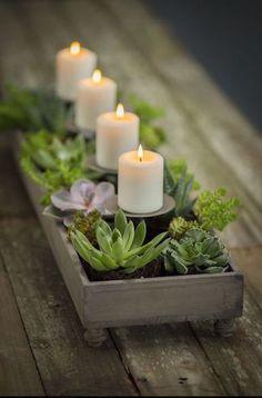 Suculentas e velas - Montar Arranjos Criativos para Centro de Mesa