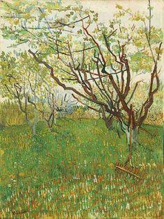Картина Ван Гога Фруктовый сад в цвету 1888