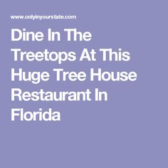 Dine In The Treetops At This Huge Tree House Restaurant In Florida