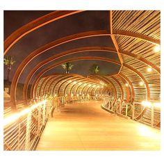 @tobicoco Bamboo structure in Corona,CA.