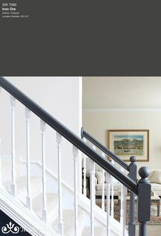 7 Best Black Paint Colors By Sherwin-Williams — Tag & Tibby Design Trim Paint Color, Best Gray Paint Color, Blue Gray Paint Colors, Best White Paint, Paint Colors For Home, Black Painted Stairs, Painted Banister, Painted Staircases, Banisters