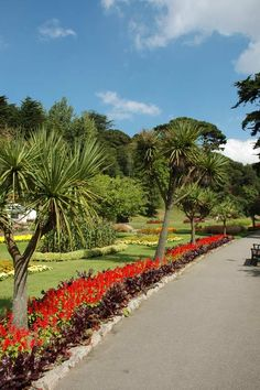 Trenance Gardens - Newquay..used to walk Little David here all the time