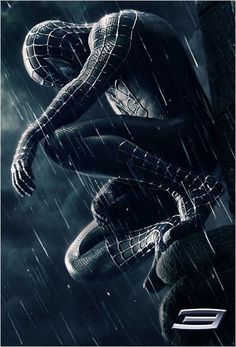 Spider-Man 3 : Affiche Sam Raimi, Tobey Maguire