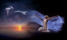 L'amore non teme, l'amore non ha paura, l'amore può tutto, arriva a tutto, è come il vento.. Una brezza che spalanca le porte dell'anima e fa tremare.. E scuote come un terremoto la ragione e la mente. (Antonio Papi)