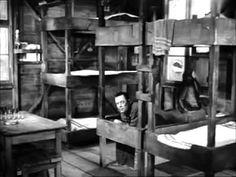 Stalag 17 1953)   William Holden, Otto Preminger, Peter Graves, Neville Brand
