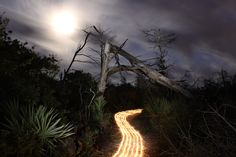 Light Painting Artist Jason D. Page | Light Painting Photography