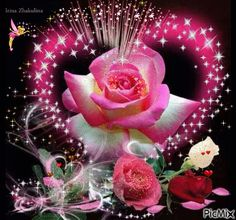 good evening images with rose ile ilgili görsel sonucu Flowers Gif, Beautiful Rose Flowers, Beautiful Gif, Roses Gif, Heart Wallpaper, Love Wallpaper, Gif Bonito, Hearts And Roses, Glitter Graphics