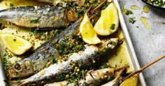 Alternative fish : anchovies, small herring, horse mackerel (scad), small mackerel, smelts, sprats