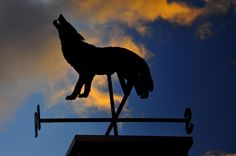 Just off the high street in Banff this animal weather vane stands proud in silhouette to let you know the prevailing wind. Canada