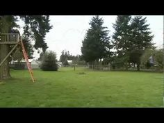 Smarthome - Backyard Ziplines - YouTube I like this one. Good customer service Zip Line Backyard, Backyard Zipline, Garden Yard Ideas, Youtube I, Good Customer Service, Smart Home, Play Structures, Treehouses, Play Ideas