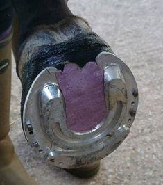 rockroll2  Euro-style rock'n roll shoe adapted by British farrier Kelvin Lymer for use on a horse at Hartpury College's equine therapy center. The shoe is nail to casting tape. (Fizz Marshall blog via horseandhound.co.uk)