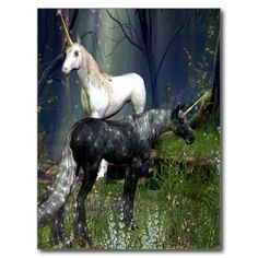 Unicorns Postcard