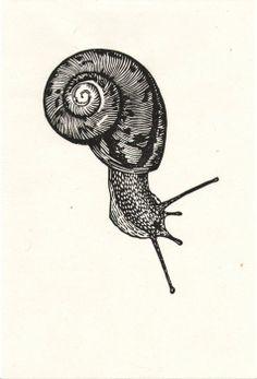 ~ Woodcut Prints by Graham Blair Cute Tattoos, Body Art Tattoos, Snail Art, Desenho Tattoo, Art Graphique, Linocut Prints, Art Plastique, Art Inspo, Printmaking
