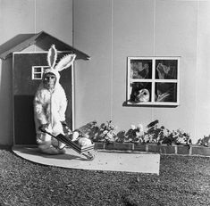 Monkey in a rabbit costume with a wheelbarrow being watched by a dog