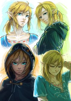 Link. Breath of the wild