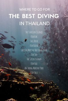 The best spots for diving in Thailand.
