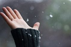 Let it Snow. I Love Winter, Winter Day, Winter Is Coming, Winter White, Winter Season, Winter Christmas, Christmas Time, Tis The Season, Winter Colors