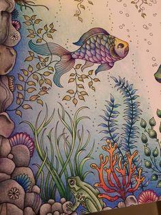 Rainbow fish. #Jardimsecreto #Secretgarden color inspiration