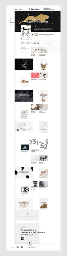 Taigamag on Behance web design clean