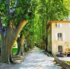Retour sur l'accueil de l'équipe nationale d'Autriche au Moulin de Vernéguès Hôel & Spa durant l'Euro 2016 ! Aix En Provence, Pont Royal, Euro 2016, Chateau Hotel, Architecture Classique, Le Moulin, Spa, Mansions, House Styles
