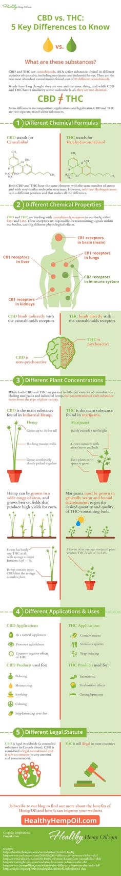 Cannabis has been used for centuries for more than just getting high. There is a reason it was approved for medical use as Cannabis Oil (CBD Oil). Medical Cannabis, Cannabis Oil, Tak Tak, Marijuana Facts, Weed Facts, Endocannabinoid System, Cbd Hemp Oil, Oil Benefits, Writing Tips