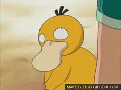 Psyduck being adorable <--Psyduck is one of the cutest original pokemon and no one gives it credit for it.