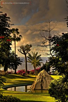 Parque Taoro by Blackpig© en el Puerto de la Cruz, Tenerife. Tenerife, Outdoor Furniture, Outdoor Decor, Golf Courses, Landscape, Park, Travelling, Holidays, Canary Islands