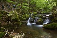 Twannbachschlucht / Gorges de Douanne Switzerland, Waterfall, River, Spaces, Landscape, Outdoor, Photos, Old Town, Tourism