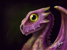 Purple baby dragon